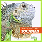 Iguanas (Bullfrog Books: My First Animal Library)