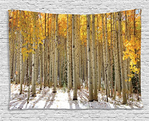 - Ambesonne Farm House Decor Collection, Aspen Trees with Golden Leaves in Snow, Forest in Early Winter Time Landscape, Bedroom Living Room Dorm Wall Hanging Tapestry, 80W X 60L Inch, Gold White Beige