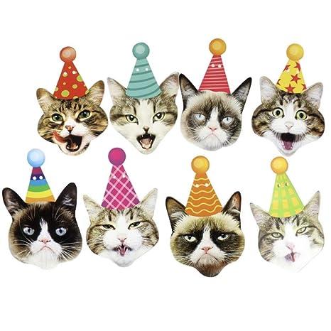 Amazon.com: CheeseandU - Guirnalda para fiesta de cumpleaños ...