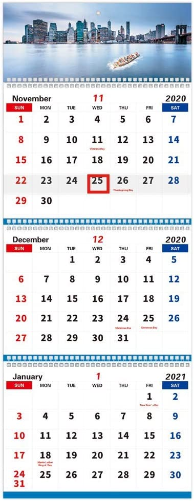 Trycooling Wall Calendar 2021 Monthly Planner 3-Month Display Vertical Wall Calendar November 2020 - April 2022 for Home School Office (Style 1)