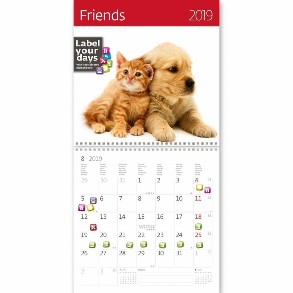 Kalpa 2019 Calendario de pared | Calendario 2019 | 30 x 30 cm | Amigos: Amazon.es: Oficina y papelería