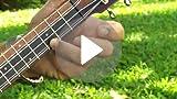 Amazon Com Kala Ka 15s Mahogany Soprano Ukulele Musical