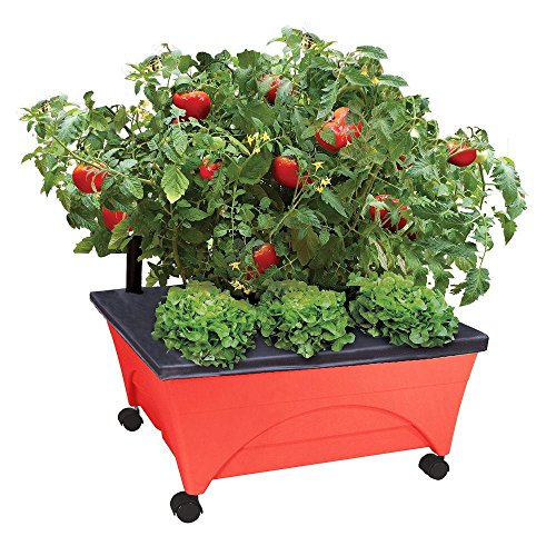 Emsco Group City Pickers 24.5 in. x 20.5 in. Patio Raised Garden Bed Kit with Watering System and Casters in Tomato Red
