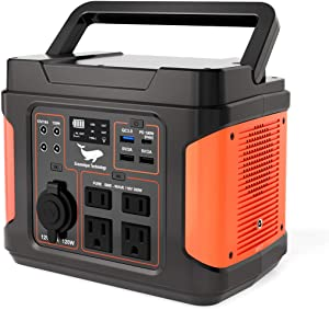 300W Portable Power Station - 2021 New Upgrade Ecosonique 296Wh 110V Pure Sine Wave Outdoor Solar Generator, Rechargeable CPAP Backup Power Supply with 160W Super Fast Charge for Home Use, Camping
