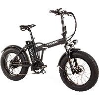 """Tucano Bikes Monster 20 - la Vélo Électrique Pliante fat bike 20"""" avec une batterie intégrée LG et display LCD avec 9 niveaux d'aide dans une couleur noire mate"""