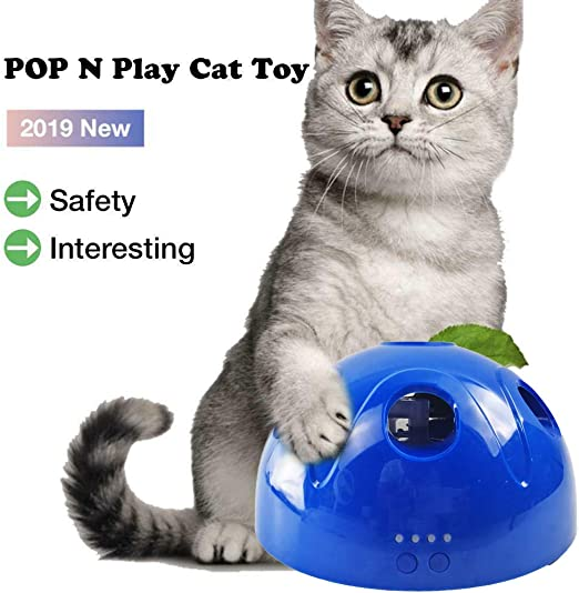 CHUANGQI Cat Toy Pop Play Pelota de Juguete para Mascotas ...