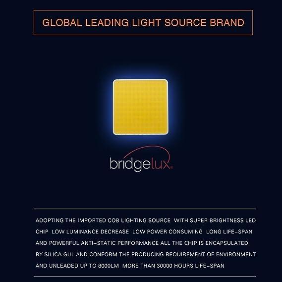 Amazon.com: TURBOSII PSX24W 2504 LED Headlight Bulb Fog Light Bulb Conversion Kit Philips Chip 8000LM 6500K Headlamp Bulb For Jeep Wrangler Patriot Grand ...