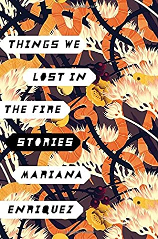 book cover of Things We Lost in the Fire