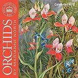 Kew Gardens - Orchids by Marianne North - mini wall calendar 2018 (Art Calendar)