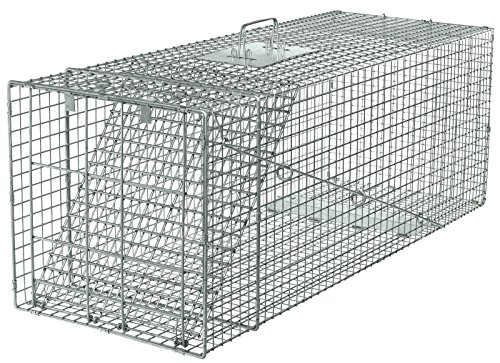 Havahart 1081 Live Animal Professional Style One-Door Large Raccoon Small... New ..#from-by#_alreadyshipped ,ket106162159061299 by itonotry