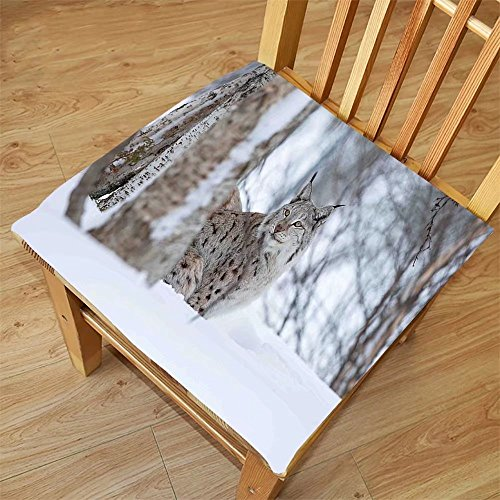 Nalahome Set of 2 Waterproof Cozy Seat Protector Cushion Animal European Lynx Snowy Cold Forest Norway Nordic Country Wildlife Apex Predator Light Brown White Printing Size - Lynx Sunglasses