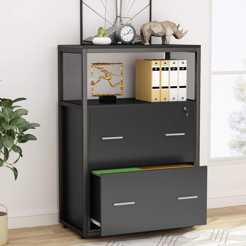 Tribesigns 2 Drawer File Cabinet with Lock, Large Modern Lateral Filing Cabinet Printer Stand with Metal Wire Open Storage Shelves for Home Office (Black) by Tribesigns