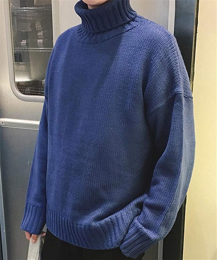 Joe Wenko Mens Leisure Tops Classical Long Sleeve Turtle Neck Knitting Sweaters
