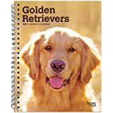 Golden Retrievers 2021 6 x 7.75 Inch Spiral-Bound Wire-O Weekly Engagement Planner Calendar | New Full-Color Image Every Week