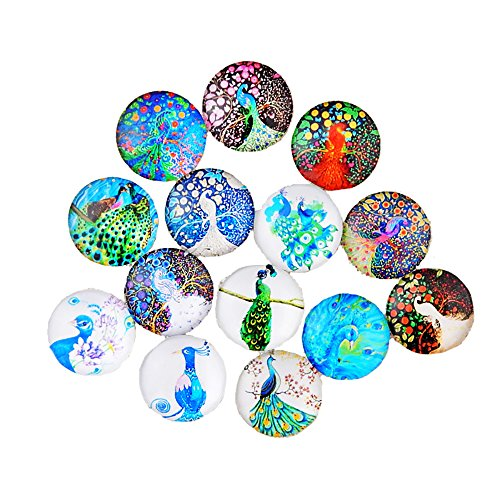 Lovglisten 12pcs 20mm Peacock Style Mixed Glass Printed Snap Button Chunk Jewelry Charms (Peacock)