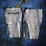 Art of Mind by Apogee