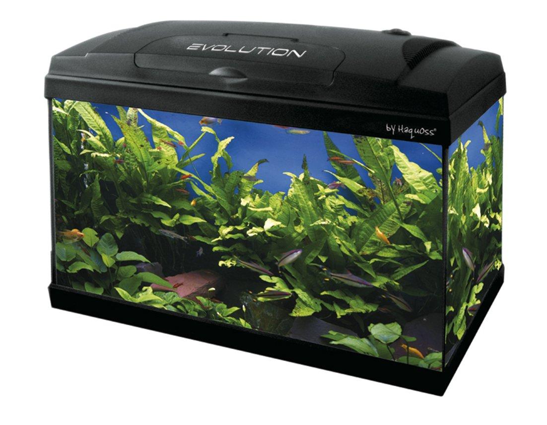 Haquoss Evolution 50, Acquario 53 Litri (50x30x44h cm; 10,5kg), Vetro 4mm, illuminazione a led (luce bianca 9000°K, 6W) Aquarialand 2.1.79.006