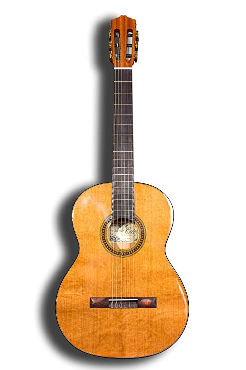 Guitarra clásica Salvador Cortez CC-08