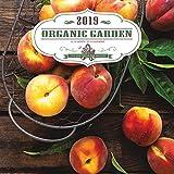 2019 Organic Garden Wall Calendar