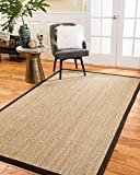 NaturalAreaRugs Maritime Seagrass Rug, 8' by 10', Mocha