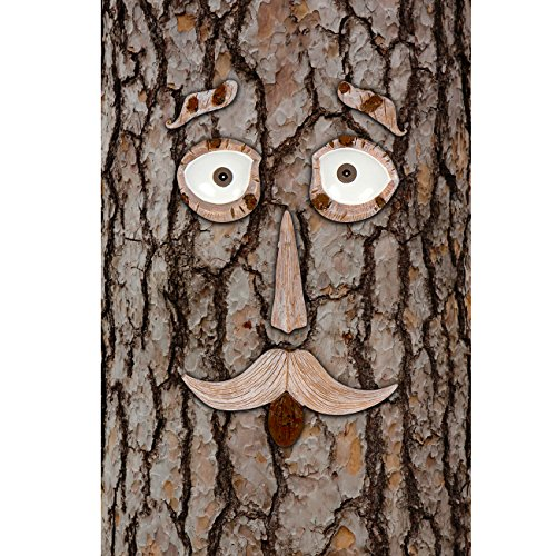 6-Piece Tree Face Set Whimsical Outdoor Garden Decoration by Hilarious Home Outdoor Tree Decoration