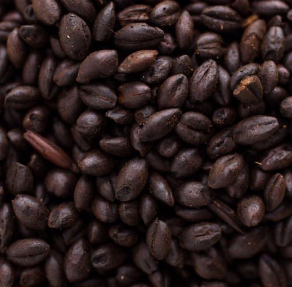 Briess Black Barley 1 lb