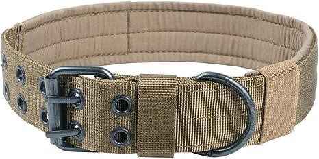 Excellent Elite Spanker Military Dog Collar | Amazon