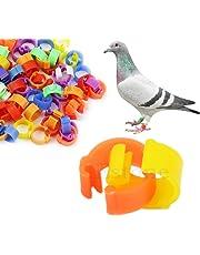 Cuigu 100 Pcs Bagues/Anneaux de Pied pour Oiseaux/Pigeon Pignon Anneaux d'Identification A Pieds pour Oiseaux, Couleur Aleatoire (Plastique)