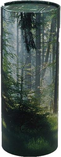 Casket Depot Memorial Collection Scattering Tube, Biodegradable Urn for Scattering Ashes, Eco Urn, Adult Size 13 Long Green Forest