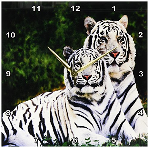 3dRose dpp_54187_2 White Tigers-Wall Clock, 13 by (Tiger Wall Mirror)