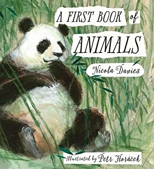 book cover of A First Book of Animals