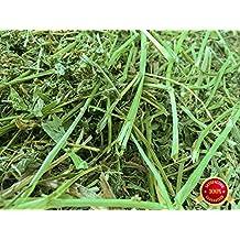 Rabbit Hole Hay Alfalfa (1 lbs.)