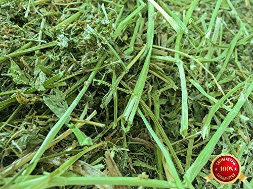 Horse Hay - Rabbit Hole Hay Alfalfa (1 lbs.)