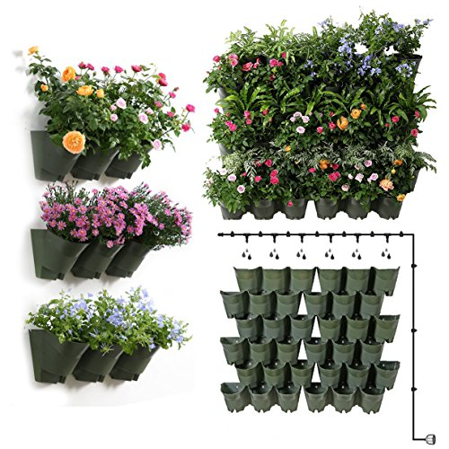 Sungmor 9.2 Sq Ft Self Watering Vertical Green Living Wall Plant Hangers  With 12pc 3