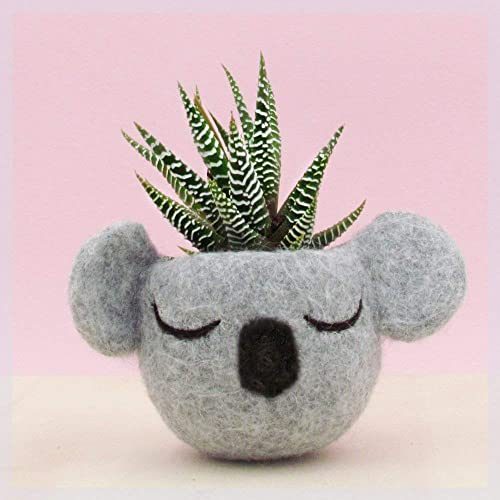 Planter Koala head planter Small succulent pot Felt succulent planter koala lover gift grey vase nursery decor