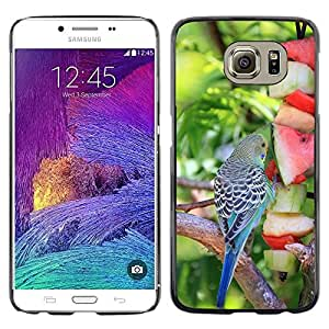 Hot Style Cell Phone PC Hard Case Cover // M00111612 Animal Bird Fruit Budgie Eat Buffet // Samsung Galaxy S6 (Not Fits S6 EDGE)