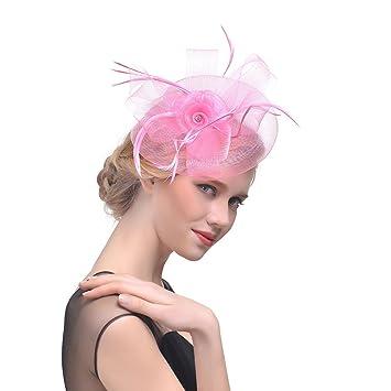 Amazon.com  Wcysin Women s Elegant Flower Veil Fascinator Cocktail ... 8ca90658e1e