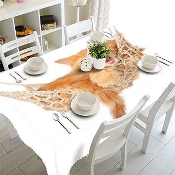 Manteles de Tela Blanca Banquete Impermeable Mesa Redonda de ...