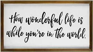 EricauBird Wood Sign, How Wonderful Life is While You're in The World Framed Wood Sign, Custom Lyrics Wall Art, Farmhouse Style Sign Decor, Elton John Song Decorative Home Wall Art 12x22