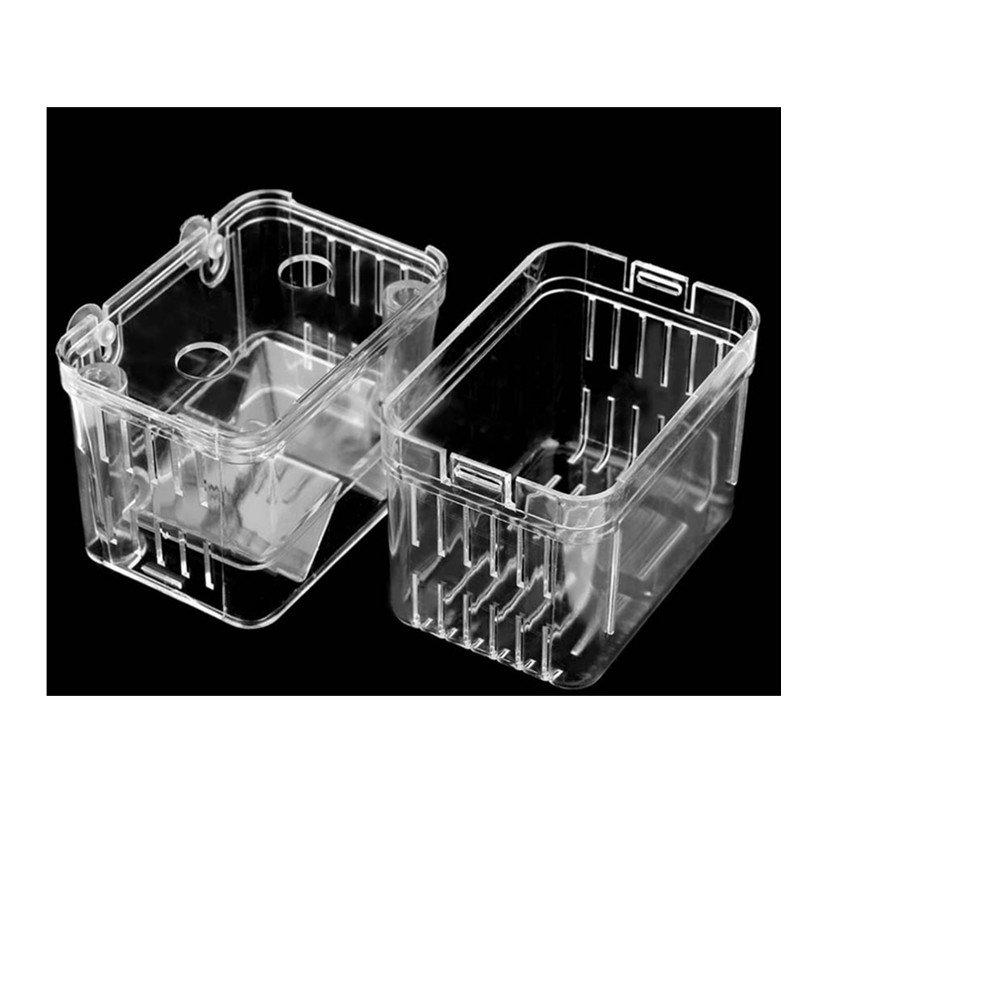 UEETEK Colgante pez criador caja peces cría tanque incubadora aislamiento caja accesorio de acuario: Amazon.es: Hogar