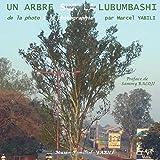De la photo à la photographie: Un arbre sur la Lubumbashi (French Edition)
