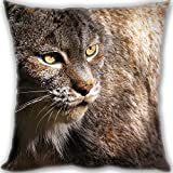 HARLAN Custom Zippered Throw Pillow 35x35cm(14x14inch) Mini Size 300g(0.66lb) (Twin sides Print)- lynx terrible dangerous Leaning Cushion