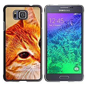 Caucho caso de Shell duro de la cubierta de accesorios de protección BY RAYDREAMMM - Samsung GALAXY ALPHA G850 - Cat Oranage Ginger White Red Mongrel