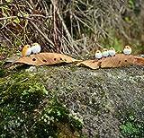 Garden Miniatures Figurines Birds Animal Action Figure Toys Ornament Acessories Resin Craft