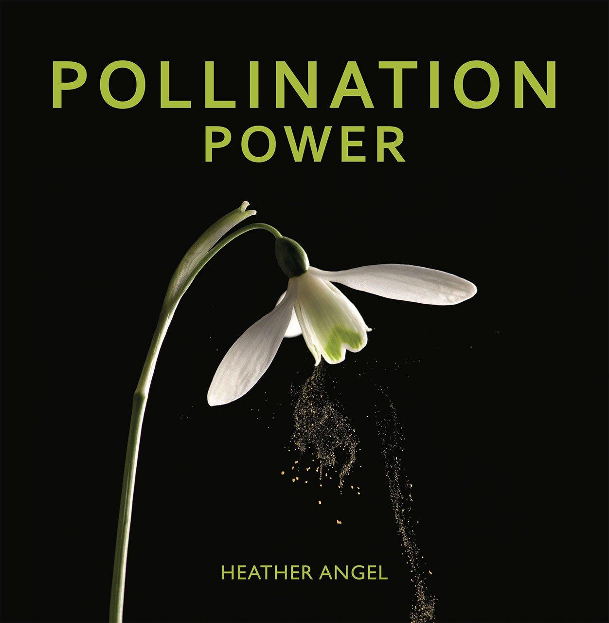 Pollination Power
