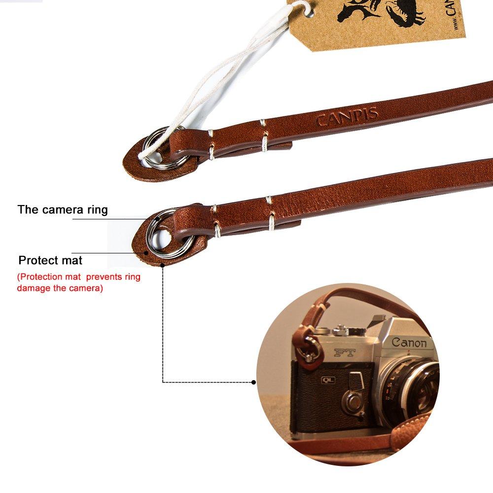 Samsung etc. Nikon tour de cou d/épaule prolong/ée Compatible avec pour Canon Marron Pentax Fujifilm Sony Canpis Cuir Sangle dappareil photo avec coussinet d/épaule