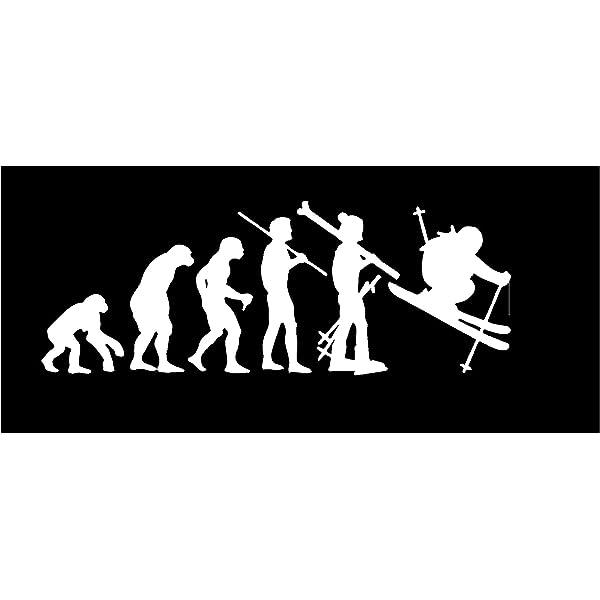 "EVOLUTION BIKER  decal sticker     FREE US SHIP  Many Colors 8/"" x 3/"""