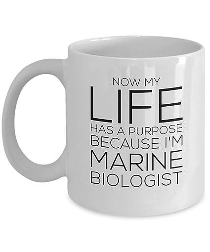 Amazon Com Evplkigir 11 Oz Coffee Mug Now My Life Has A Purpose