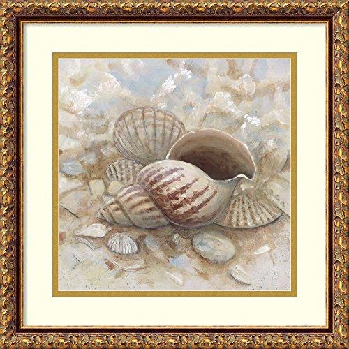 Framed Art Print 'Beach Prize I: Triton Seashell' by Arnie ()