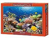 1000 piece fish puzzles - Castorland